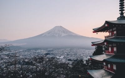 A Teaching from Nature in Japan